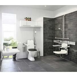 Комплексные решения для ванных и душевых для людей с ограниченными двигательными способностями Delabie